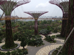 Supertrees with the Cloud Forest dome in the background