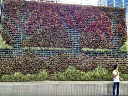 A vertical garden, very popular, in the Peolpe's Square
