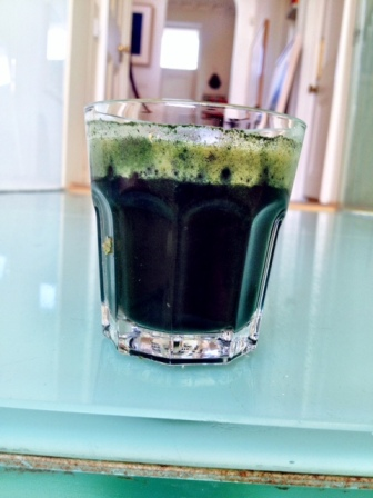 The undrinkable spirulina infested green juice!