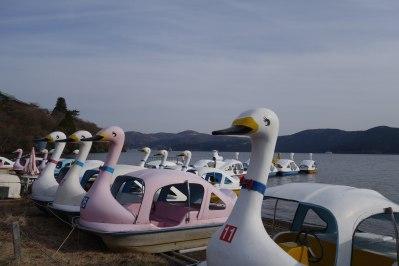 Ride a white swan...