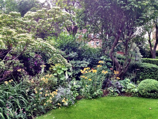 My lovely garden is waiting for me back in Lonnon