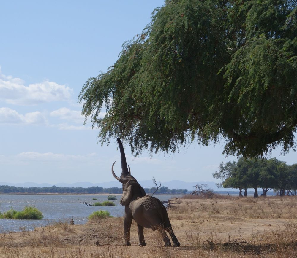 Chilling in Zimbabwe - literally (6/6)