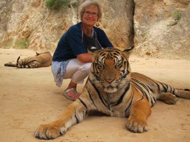 At the Tiger Temple