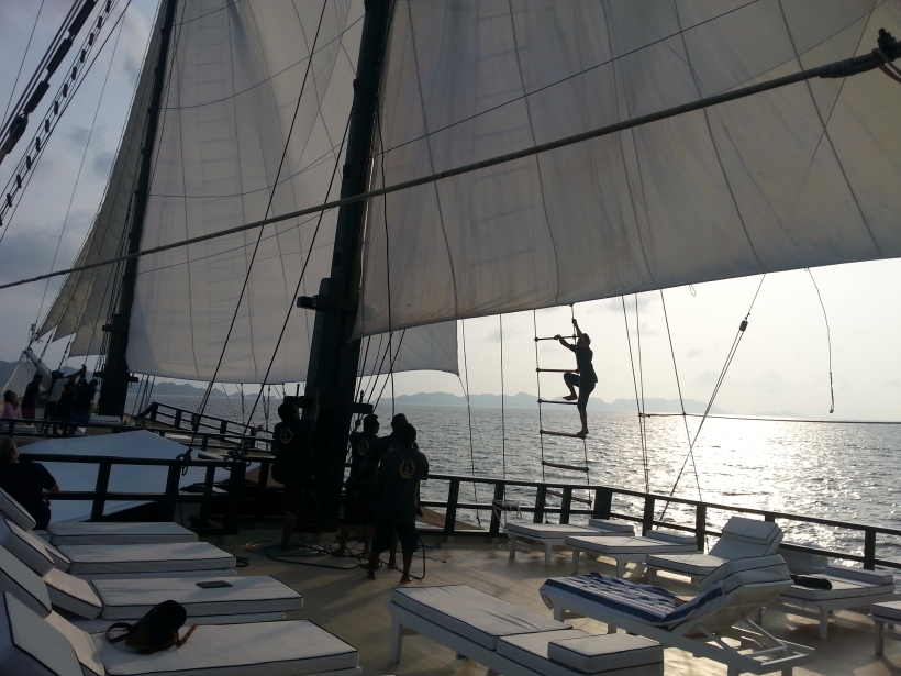 Getting the sails up