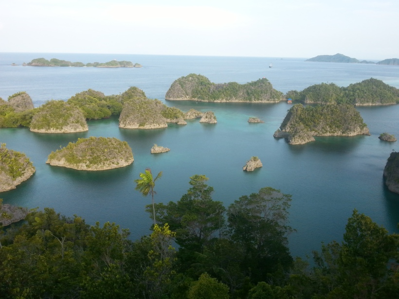Typical Raja Ampat scenery