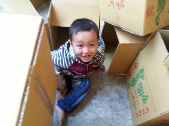 This little chap was enjoying playing in the packing boxes