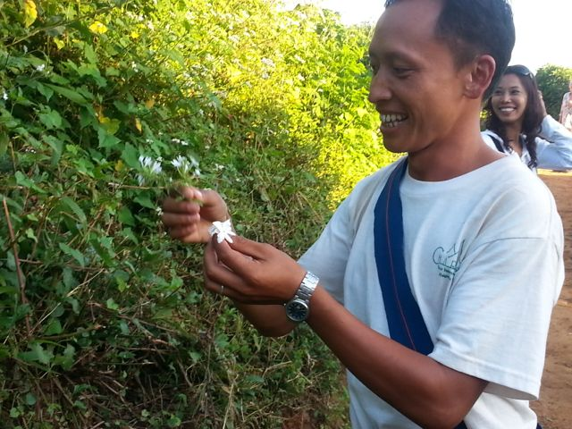 Amaung picking jasmine for us