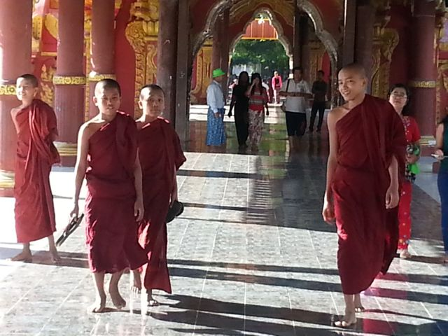 Monks strolling through the calm of the pagoda