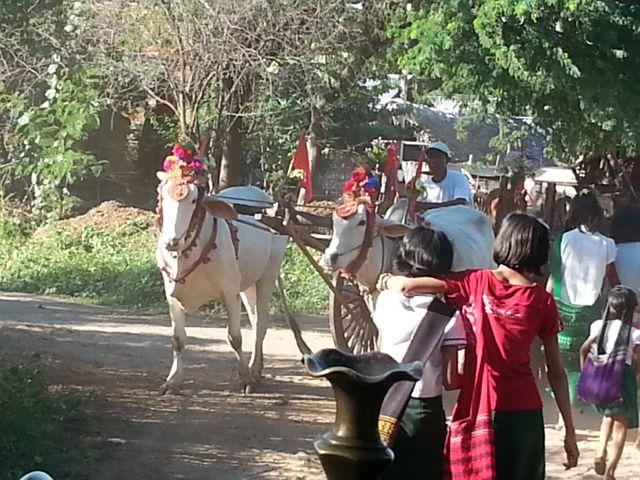 Burmese days 4 - ballooning over Bagan (5/6)