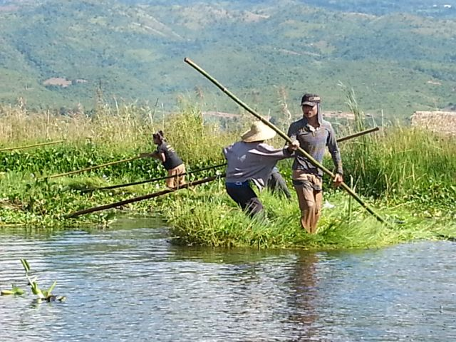 Burmese days 5 - Inle Lake, home to one-legged poling fishermen (4/6)