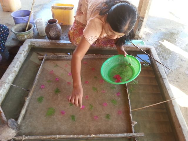 Making paper - dropping in the bougainvillea flowers