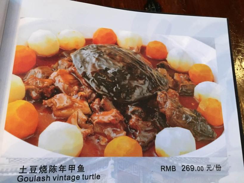 Turtle on the menu
