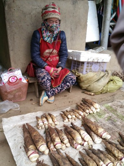 Selling bamboo shoot