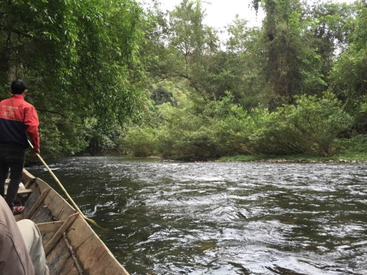 Tranquilly going downstream...