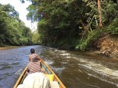 navigating the rapids