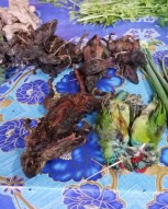 More birds and rats for sale