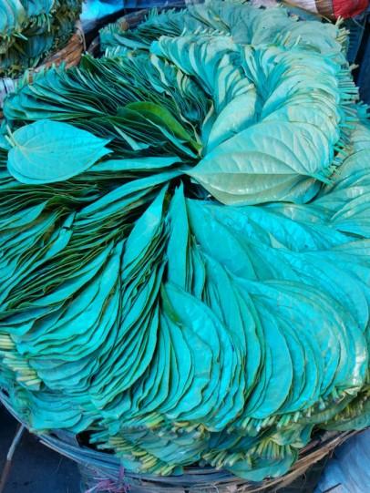 Leaves for betel nut