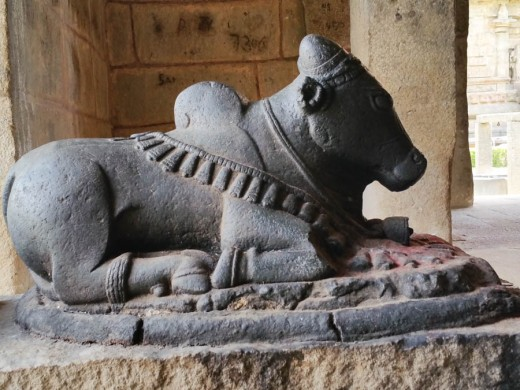 Fabulous Nandi at Brihadishvara