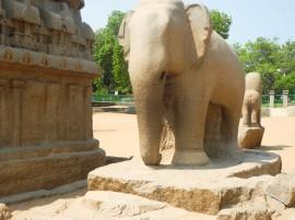 7th century Elephant, Mamallapuram