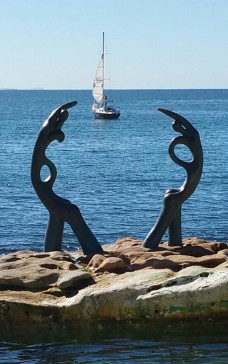 Arty shot, Manly