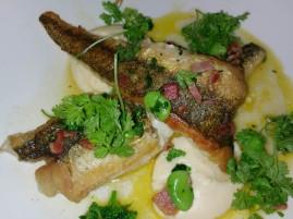 Fish at Cafe Sydney