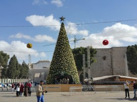 The Christmas Tree!