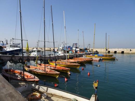 Port at Jaffa