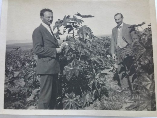 My grandfathers two best friends reunited in Palestine: Ludwig Pinner left and Gustav Krojanker