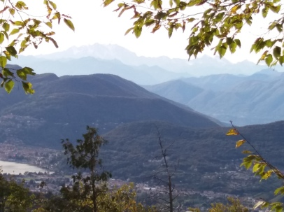 Monte Rosa in the distance
