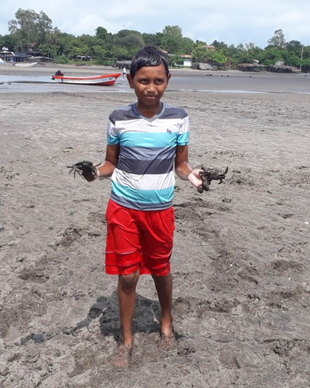 The crab catcher