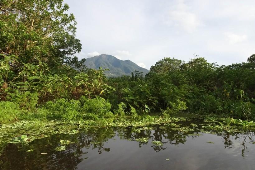 ometepe-wetlands-28