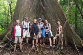 Team in front of a giant fig tree