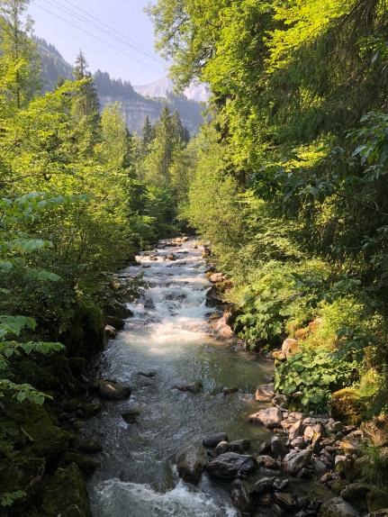 The River Vieze