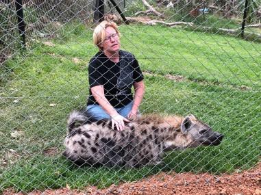 Ellen with teh submissive hyena