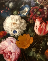 And here, look at the insects in this still life also Dutch from 1665