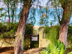 Garden gate to the beach