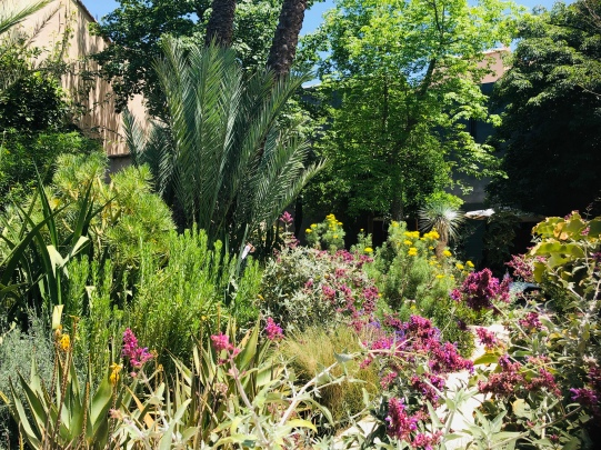 Le Jardin Secret in the Medina