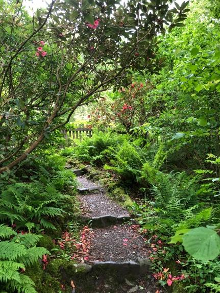 Ruskin's secret garden