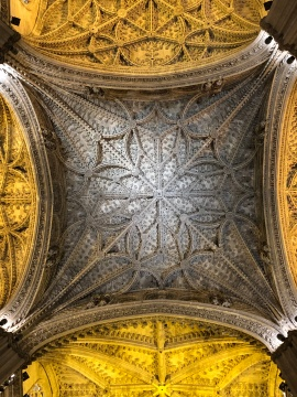 The roof in the cathedral