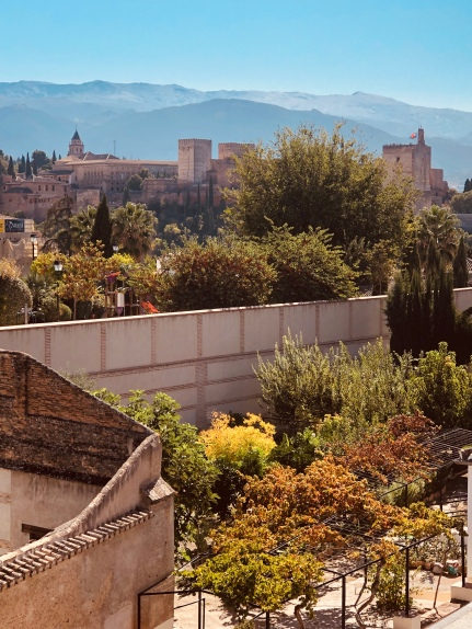 view from Palacio Dar al-Horra