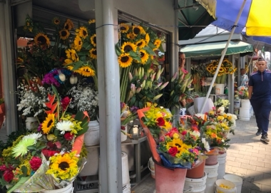 MEdellin is flower capital of Colombia